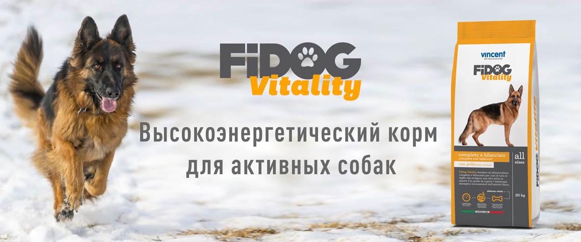 FiDog